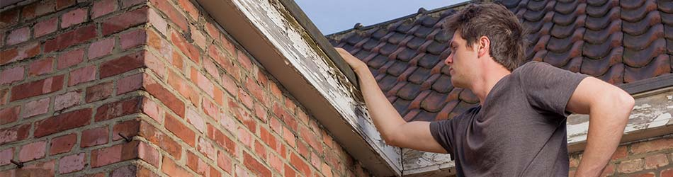 lekkage opsporen dakwerker